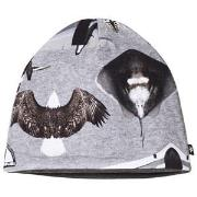 Molo Ned Baby Hat Planes and Birds 0-3 mdr