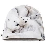Molo Nedine Baby Hat Polar Bear Jersey 3-6 mdr