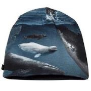 Molo Ned Baby Hat Arctic Landscape 0-3 mdr
