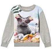 Molo Regine T-Shirt Vacation Pets 92 cm (1,5-2 år)